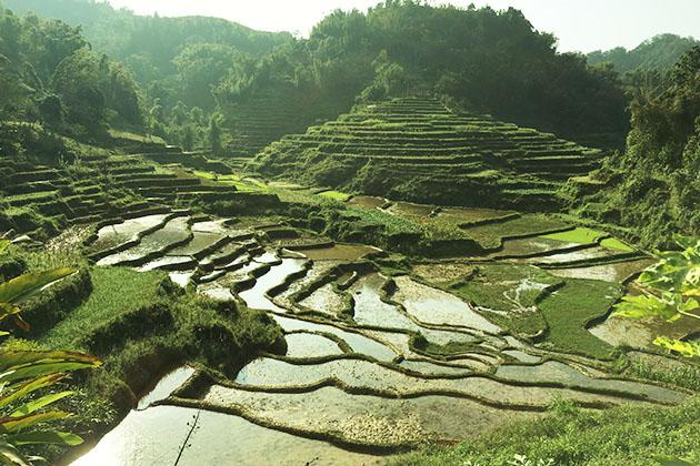 Around Pu Bin Mai Chau
