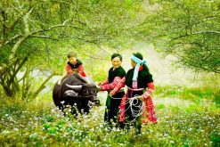 Authentic North Vietnam Tour