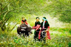 Authentic North Vietnam Tour