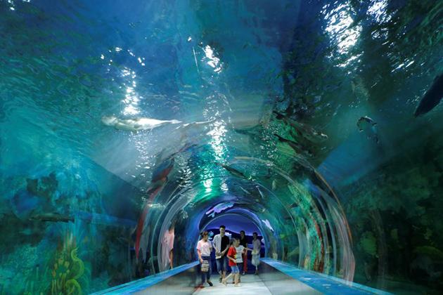 Bao Son Paradise Park Aquarium