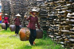 Cycling To Traditional Villages in Hanoi
