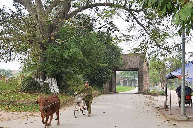 Duong Lam Ancient Village Hanoi Tour