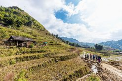 Experience Sapa Tour From Hanoi