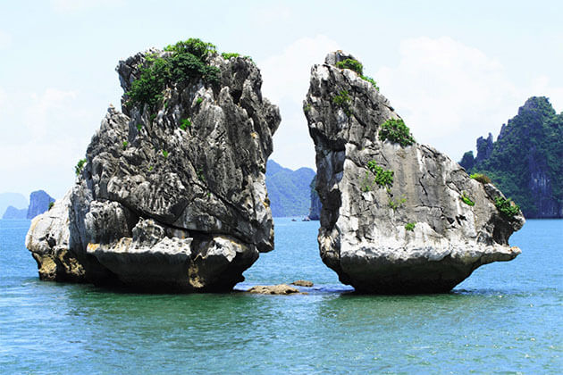 Fighting Cocks Island Halong Bay Tour from Hanoi