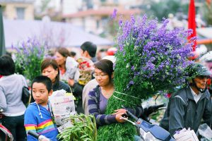 Flower Markets in Hanoi - Prepare For Tet Holiday