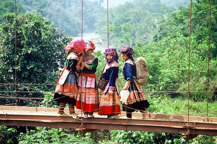 Hanoi Sapa Halong Bay Tour
