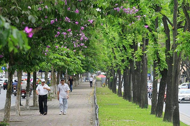 Hanoi Walking Street Travel Guides Maps