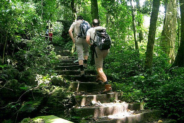 Hiking at Cuc Phuong National Park