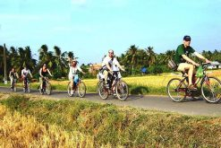 Amazing Ninh BInh Bike Tour