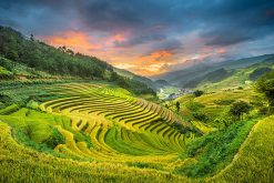 Northwest of Vietnam Adventure Tour