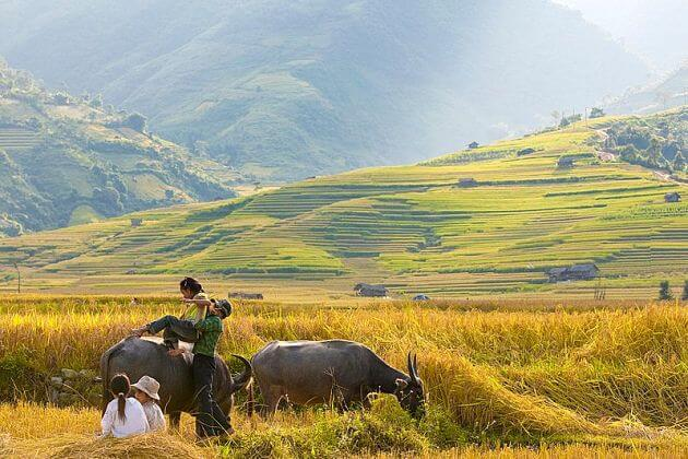 Peaceful tu Le Mu Cang Chai