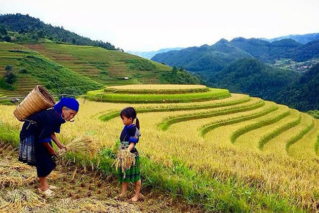 Tribal Villages in Sapa Tours