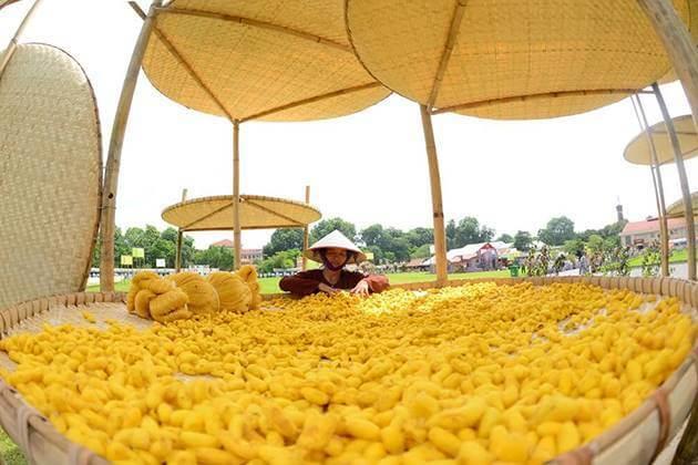 Van Phuc Silk Village in Today
