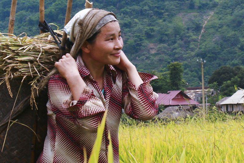 travel confidently to hanoi