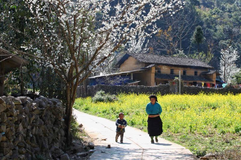 visit ha giang in day trips hanoi